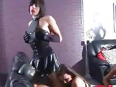 Dildo, Femdom, BDSM